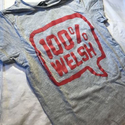 8-9 Year Welsh Tee